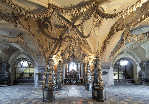 Every bone in the human body can be found in this bone chandelier