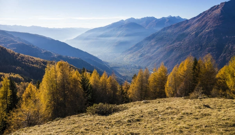 view_of_the_valley_of_tirano_and_sondrio_in_valtellina_italy_2