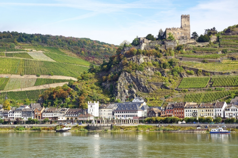 View on Rhine Valley, Germany
